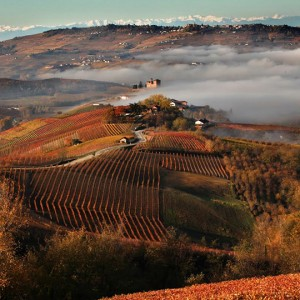 LANGHE, ROERO AND MONFERRATO